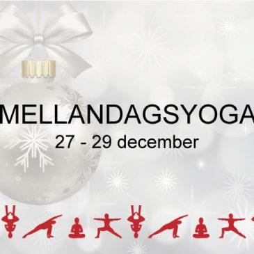 Mellandagsyoga Iyengar yogacenter