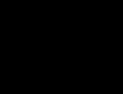 Symbol som visar att personen är utbildad och certifierad inom Iyengar yoga metoden